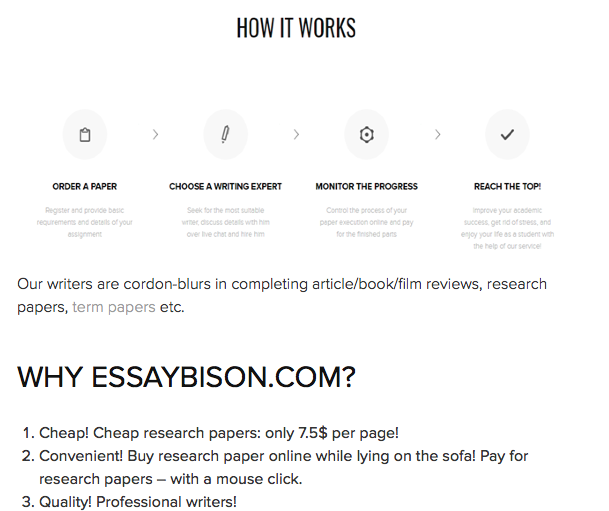 Review about EssayBison Services