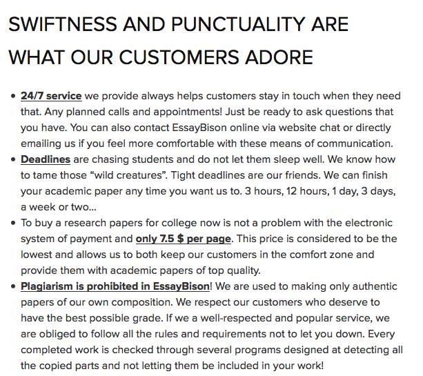 Review about EssayBison.com Service